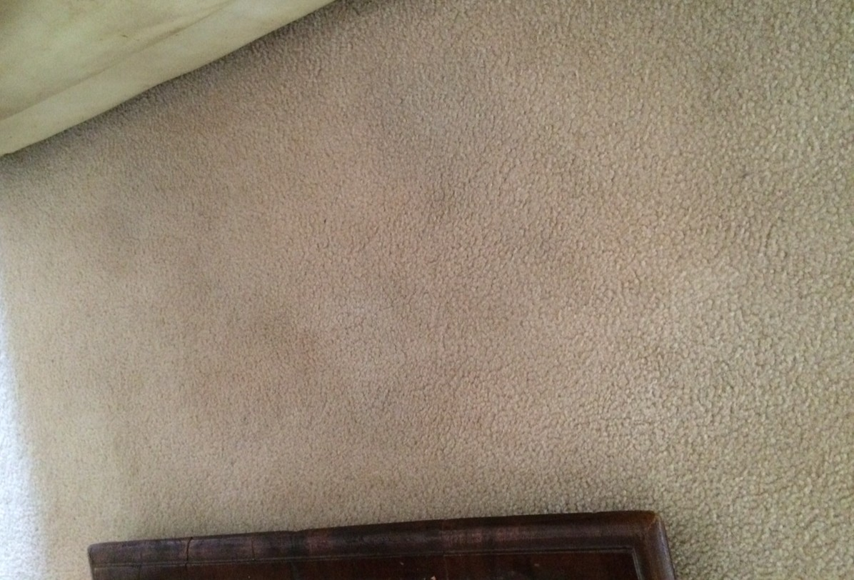 cleaner carpets with an iron